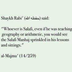Wise words by shaykh Rabi (hafidhullah)