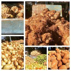 Produce market government run very busy #exploringcuba #bfadventures #cuba #havana