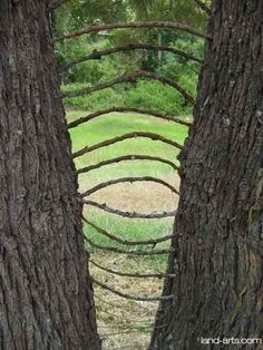 When visiting a park or forest.   A link between trees.
