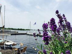 Mit dem Fluisterboot über die Kagerplassen