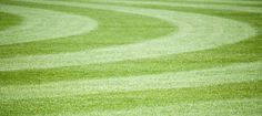 How to Stripe Your Lawn
