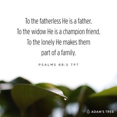 To the fatherless He is a father. To the widow He is a champion friend. To the lonely He makes them part of a family. Psalms 68:5 TPT  Be encouraged friends!