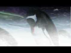 SeaWorld Orlando Gives First Behind-the-Scenes Look at Antarctica: Empire of the Penguin