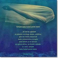 Poezija, misli, citati, aforizmi: Poezija - Sanjam kako hodaš pored mene, Dobriša Ce...