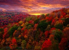 """""""October is the month for painted leaves.... As fruits and leaves and the day itself acquire a bright tint just before they fall, so the year near its setting. October is its sunset sky....""""  ~ Henry David Thoreau, """"Autumnal Tints"""" (image at youtube.com)"""