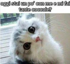 Ooooh...♥