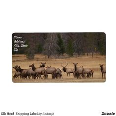 Elk Herd  Shipping Label