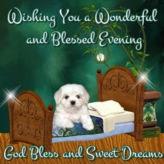 Good night my dear sweet Emily.  May God give you blessed dreams.  Loves ya Girl!
