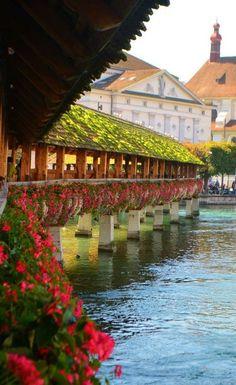 The gorgeous covered bridge in Lucerne, Switzerland.