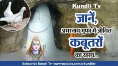 Learn, The Secrets of Living Pigeons in the Amarnath Cave in Hindi Astrology Report, Cave, Concept, Learning, Caves, Study, Teaching, Studying, Education