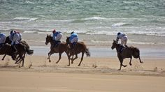 The main events of the Geesala Festival are horse racing on the beach at Doolough, deemed to be the 'best turf ' in the country. #mayo #ireland #horse racing