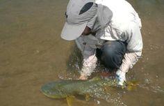 Pesca deportiva sostenible - 7 acciones necesarias