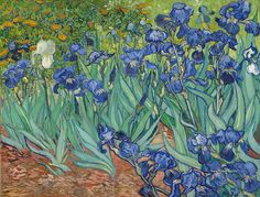 photo 780 Vincent Van Gogh - 889 Irises-1889-GettyC_zpsmivbfyhr.jpg