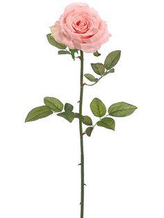 """Suzette Garden Open Silk Rose in Peach Pink 4"""" Wide Bloom x 27"""" Tall"""