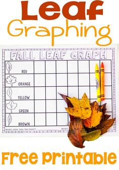 Free leaf graphing printable. Perfect for fall math and learning colors! Head outside today to collect your leaves! Fall Preschool Activities, Graphing Activities, Preschool Math, Kindergarten Activities, Learning Activities, Preschool Fall Theme, Seasons Kindergarten, Thanksgiving Activities For Kids, Seasons Activities