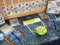 Funky fingers - bird feeders Year 1 Classroom, Early Years Classroom, Classroom Ideas, Nature Activities, Preschool Activities, Baby Owls, Owl Babies, Finger Gym, Funky Fingers