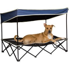 Pet Shade, Navy, Large — Buster's Got It Made in the Shade | www.kotulas.com | Free Shipping