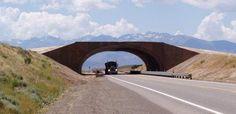 With wildlife crossovers, Nevada hopes to reduce carange