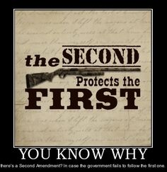 essay on gun control and the second amendment