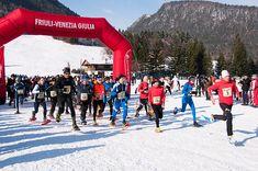Ciaspolissima 2015, in programma il 24 e 25 gennaio sulle nevi di Malborghetto-Valbruna http://news.mondoneve.it/ciaspolissima-2015_7864.html #montagna #neve #sci #snow #mountain #ski #alps