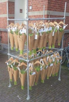 24flowers.nl cool way to display bridles and halters