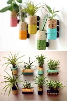 Como Plantar Suculentas em Rolhas de Cortiça: DIY - meularminhapaz.com.br Wine Cork Crafts, Dyi Crafts, Garden Crafts, Diy Garden Decor, Arts And Crafts, Crafts For Kids, House Plants Decor, Plant Decor, Cork Art