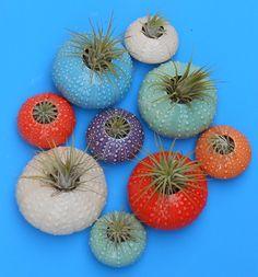 https://www.etsy.com/fr/listing/267806155/grandes-poches-doursin-plantes-de-lair?ref=shop_home_active_68