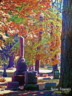 Sun streaming through foliage strikes tombstones in Portland's oldest cemetery. The old grave markers emulate tree trunks in the lush, but eerie atmosphere.    THE OLD ONES - Gothic Haunting Victorian Cemetery Fine Art Photography by Susan Tooker of Spinning Castle.    This photo was taken at Lone Fir Cemetery, Portland, Oregon. Spanning 30 acres with more than 25,000 burials, Lone Fir is the oldest of Portland's original cemeteries.