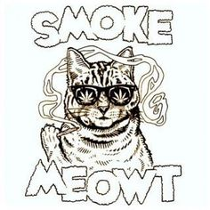 Gift for my stoner friends! super washed out hand tye dyed og smoke meowt shirt. the shirt that gets you high. Adult Coloring, Coloring Pages, Coloring Books, Marijuana Art, Cannabis Oil, Medical Marijuana, Weed Humor, Weed Jokes, Witches