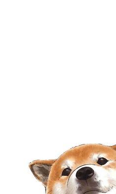 Cute dog phone wallpapers · shiba inu shiba inu, most beautiful Dog Wallpaper Iphone, Tier Wallpaper, Cute Dog Wallpaper, Drawing Wallpaper, Trendy Wallpaper, Kawaii Wallpaper, Animal Wallpaper, Apple Wallpaper, Screen Wallpaper