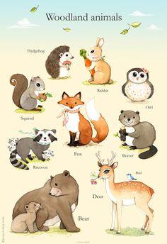 Woodland animals poster, Woodland Nursery Art, Woodland art, Watercolor animals…