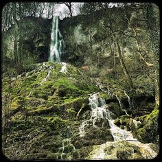 Nice #Dayhike with beautiful #Waterfall near #BadUrach in #Germany .   Visit me on Youtube. Link in Bio!#bushcraft #wilderness #outdoors #hiking #outdooradventures #woodsman #themountainiscalling #getoutdoors #bushcrafting #wildernessculture #getoutthere #getoutside #getoutstayout #survival #camping #thegreatoutdoors #stayandwander #campvibes #camplife #takeahike #wildernessculture #theoutbound #adventureculture #outdoorpics #nature