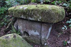 Самые крутые древние дольмены мира в Сочинском Национальном парке - megalithica.ru Garden Sculpture, Outdoor Decor