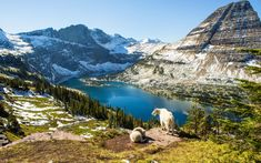 Travel to American national parks after quarantine could end up being sustained by the Great American Outdoors.
