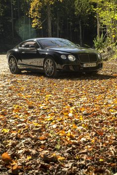 2013 Bentley Continental GT Speed this would be my baby if price was no option or if i made millions but i teach hahaha