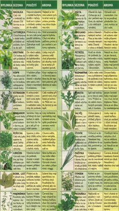 Bylinky - My site Healing Herbs, Medicinal Herbs, Vegetable Pancakes, Stipa, Detox Salad, Dieta Detox, Health Advice, Detox Drinks, Herb Garden