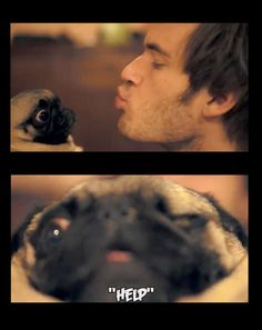 Pewdiepie and puga-chan!!!