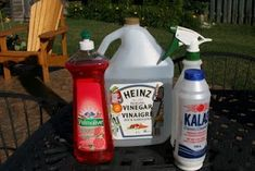 Natural Weed Killer - Spring is coming and this is the BEST Weed Spray. I made 3 gallons for around $4.00 last year after seeing a pin. Worked better than Round Up & killed the weeds/stray grass on first application. One gallon of APPLE CIDER VINEGAR, 1/2 c table salt, 1 tsp Dawn. Mix and pour into a smaller spray bottle. (you can purchase 3 gallon size Apple Cider Vinegar in the canning section of a good hardware store - cheap!)