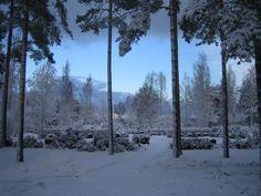 talvinen hautausmaa