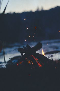 Campfire while camping in the wilderness.