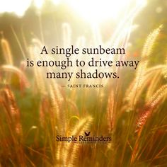 A single sunbeam is enough to drive away many shadows