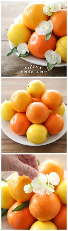 Citrus Centerpiece w