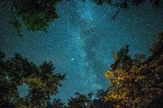 Stars under bonfire. North of the Wisconsin Dells. [OC] [4200x2800] http://ift.tt/2mxNVok