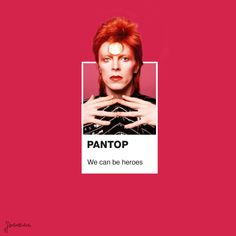 Pantone-Inspired Pop