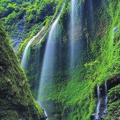 Madakaripura Waterfall Probolinggo, East Java