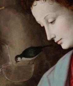 Madonna and Child with St. John (detail) Francesco Bacchiaca