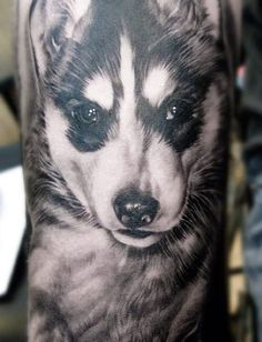Tattoo Artist - Elvin Yong Tattoo - animal tattoo