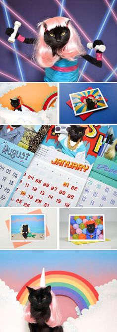"If you haven't already snatched up a 2016 calendar, may we suggest photographer and cat stylist Kate Funk's '80s-themed ""Super-Amazing 100% Awesome"" version, starring her exceptionally patient pet AC in an array of outlandish outfits? While you're there, don't miss her astrology-inspired greeting cards and other one-of-a-kind designs. #etsyfinds"