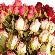 Easy Ways to Perserve Flowers | eHow