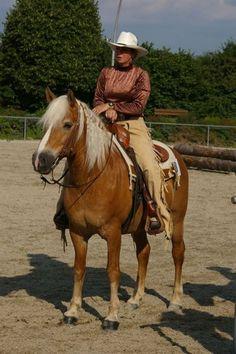 Elke Riebler with Haflinger Niko - Meitingen www.myheimat.de399 × 600Search by image western-riding tournament